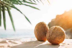 menyembuhkan impotensi dengan air kelapa