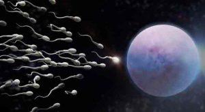 Sperma Bermanfaat Untuk Kulit