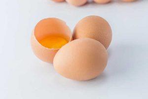 telur-membuat-penis-tahan-lama-klinik-lelaki