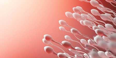 sperma kuning
