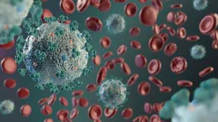 virus corona kesuburan