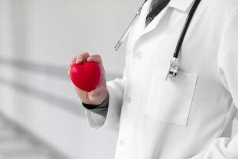 manfaat buah pepaya untuk vitalitas pria