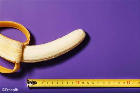 menebak ukuran penis