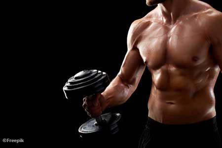 fungsi payudara pria