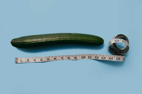 penis besar