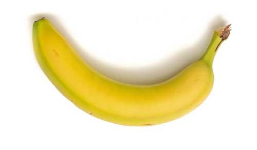 makanan organ tubuh